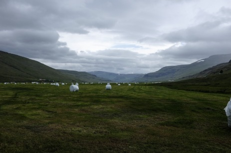 Miles of bales
